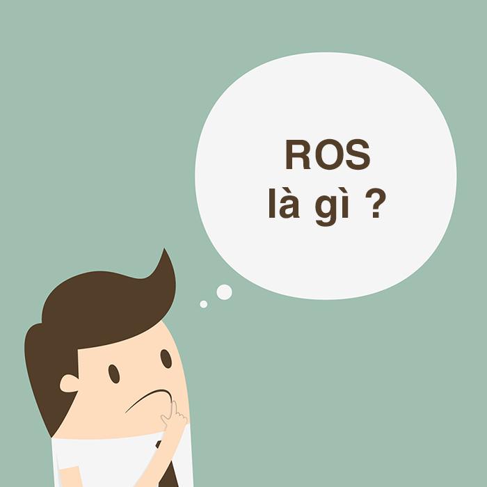 Định nghĩa chỉ số ROS