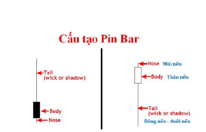 Cấu tạo nến Pin Bar
